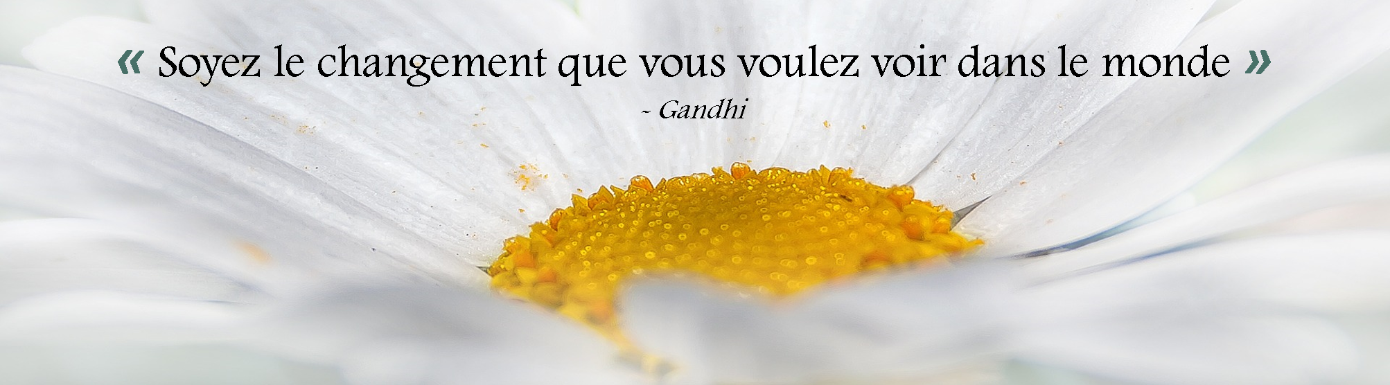 Banniere citation Gandhi 2